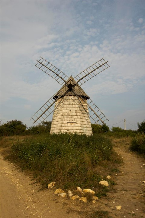 WINDMILL FROM PACANÓW